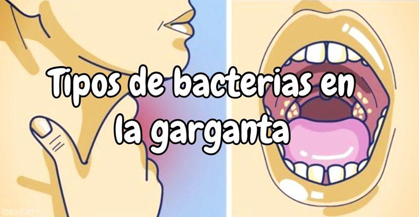 Tipos de bacterias en la garganta